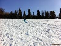 La grande nevicata di Febbraio 2012