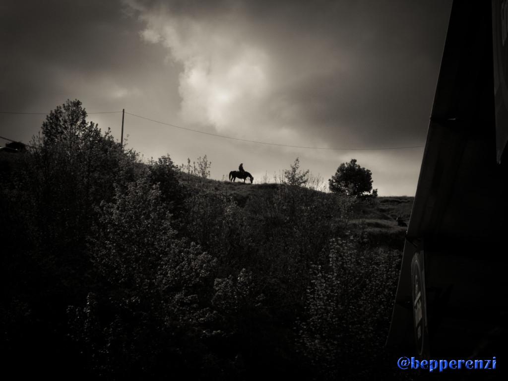 Montecopiolo - Cavallo all'orizzonte
